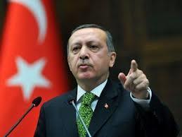 Er nye forfatningsplaner et forsøg på at danne en 'Erdoğan-stat'?