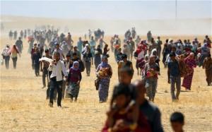 Interview med Zerin Khalaf, en ezidi-kurder