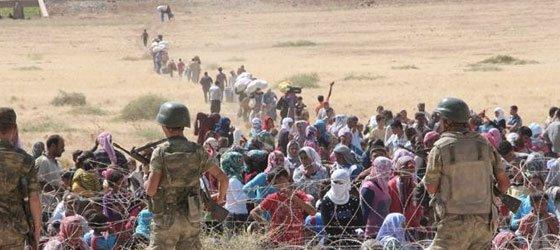Tyrkiet: Et land klemt imellem IS og Kobanê?