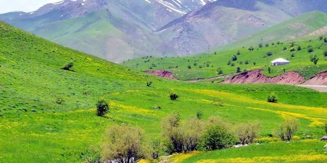 Barnet spørger: Hvorfor har kurderne ikke noget land?