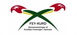 Tyrkiets invasion i Kurdistan