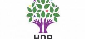 HDP fortsætter sine møder i Europarådet