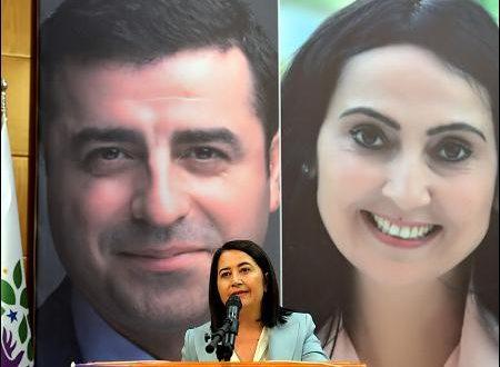 Hvem er HDP's nye med-forkvinde?
