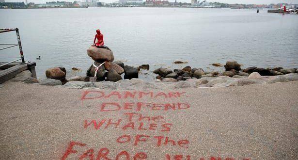 Grindefangst på Færøerne vækker vrede i Danmark
