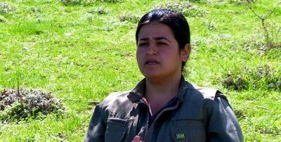 KODAR-medformand: Kurdisk spørgsmål er et af hovedproblemerne i Iran