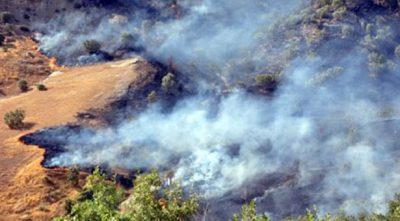 HDP: Skovbrande ødelægger livet i Dersim