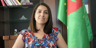 Afslutningen af Öcalans isolering er nøglen til fred
