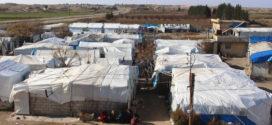 Flygtninge fra Idlib i Raqqa: SDF har sikret vores sikkerhed