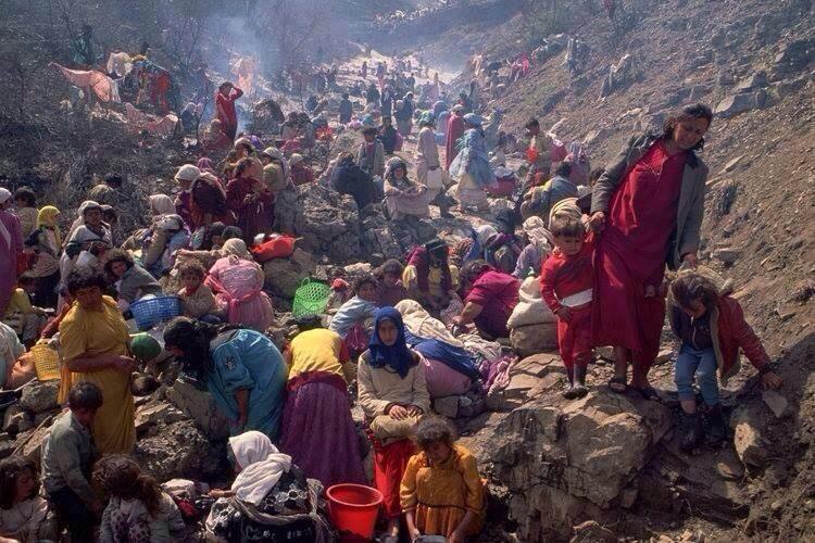 Massegrave fyldt med lig af kvinder og børn fundet i Shingal