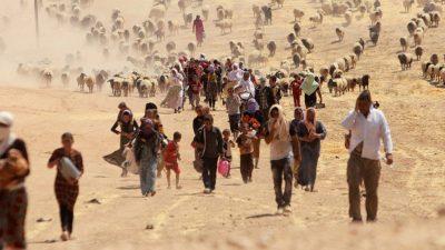 Mindst 2.600 ezidi-kvinder og børn savnes