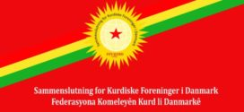 Fey-Kurd fordømmer drabet på den 20-årige  Barıs Çakan