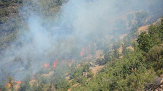 Militære stillinger oprettes efter skovbrande i den kurdiske region